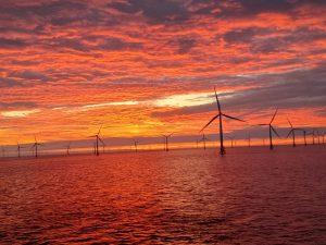 sunset, wind farm, offshore